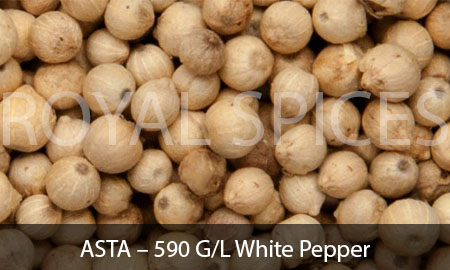 ASTA – 590 G/L White Pepper