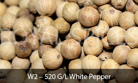 W2 – 520 G/L White Pepper